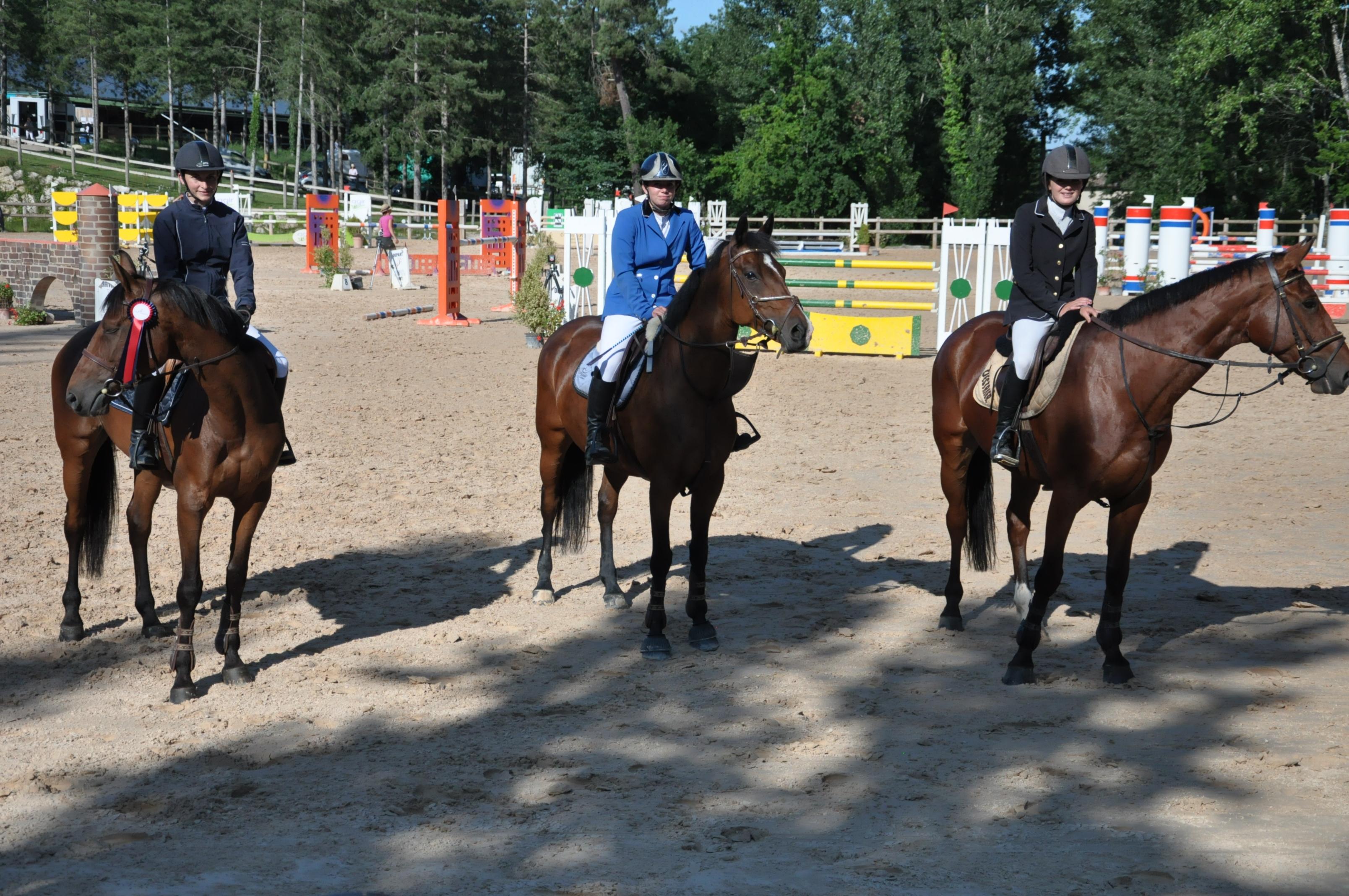 Un projet de centre d'équitation crispe particulièrement les positions. « Les chevaux seront nuisibles à l'écosystème de nos rats et de nos punaises ! » estiment certains migrants.
